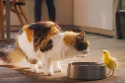 Mars Petcare gives brutal twist to debut ad for Dreamies Deli-Catz brand