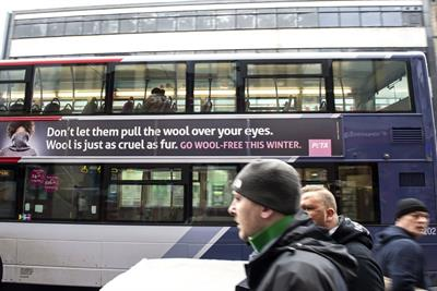 Peta ad banned by ASA for claiming wool is 'just as cruel as fur'