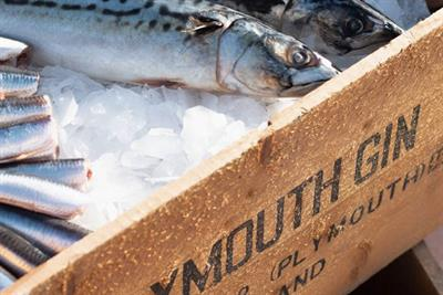 Pernod Ricard's Plymouth Gin partners Mark Hix for seafood 'cook-along'