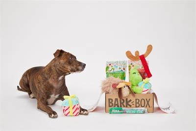 Show your loyal dog some love with The Grinch BarkBox