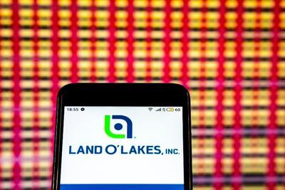 Land O'Lakes names Battery and Havas Media as agencies of record
