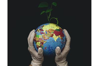 Understanding our carbon footprint