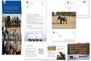 WWF-UK 'just add water' by Kitcatt Nohr Alexander Shaw