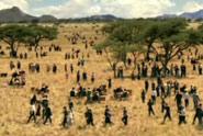 Right Move 'safari' by Hooper Galton