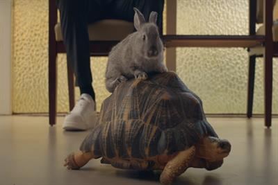 American Express' 'The Bunny' speaks to small business owners