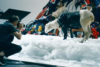 "Diesel ""Say no to uncool wool"" by Publicis Italy"