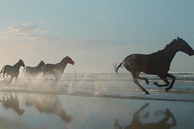 "Lloyds Bank ""The running of the horses"" by Adam & Eve/DDB"