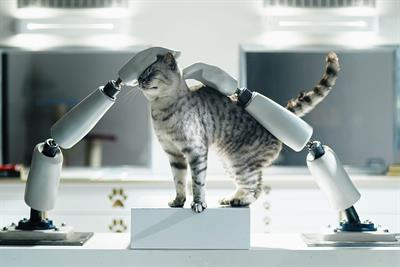 "Whiskas ""Kat Institute of Technology"" by AMV BBDO"