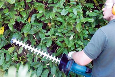 Makita DUH551Z cordless hedge trimmer