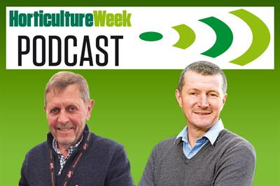 Horticulture Week Podcast: Pennard Plants looks forward to its tomato showcase at Chelsea and an autumn of grow-your-own supply challenges