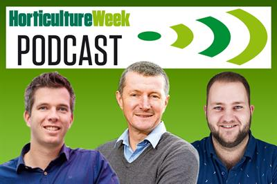 Horticulture Week Podcast: Signify on lighting for strawberries