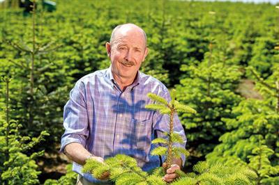 Me & My Job - William Rose, Owner, Fillingham Christmas Trees