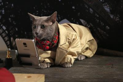 """Virgin Mobile USA """"catsies"""" by Mother New York"""