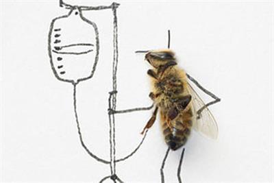 Mayor of London 'capital bees' by LIDA