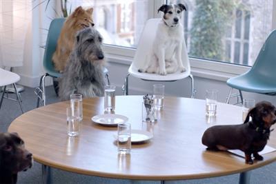 "Tesco Bank ""Pet research group"" by BBH London"