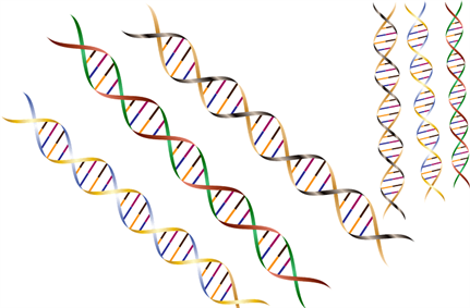 MyHeritage, 23andMe, genetic testing firms join forces with FPF to develop guidance to protect DNA data