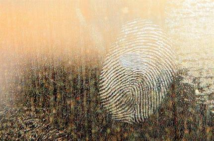 SSL/TLS fingerprint tampering jumps from thousands to billions