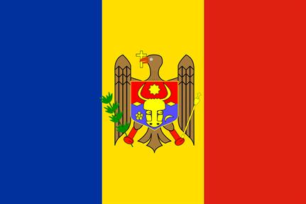 Moldovian sentenced for stealing millions using Bugat banking malware