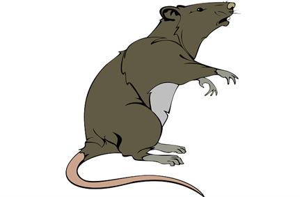 New report pins down location of Emotet RAT controllers