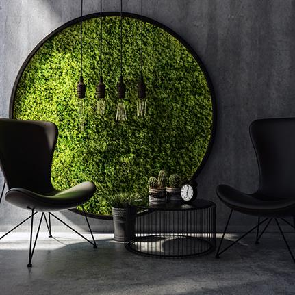 Don't adjust your dial: Moss is the growing trend in UK office design