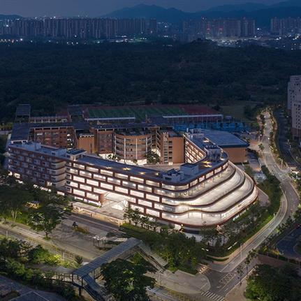 2021 WAN Awards entry: A New Flowing Campus Growing from The Old Chessboard - Yunchao Xu/Atelier Apeiron/SZAD