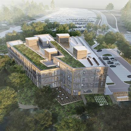 ZAS Architects' Net Zero Carbon wooden office design in Toronto