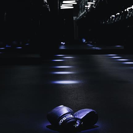SHH expands KOBOX'S nightclub themed fight club