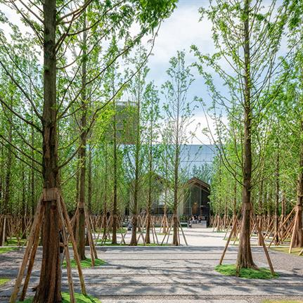 2020 WAN Awards entry: Chongquin Forest Park - A&N Shangyuan Landscape Design