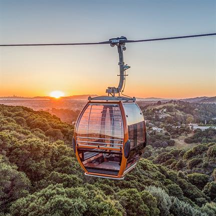 Ride through the skies to access new Californian Zoo trail