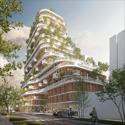 2021 WAN Awards entry: Vancouver Forest - Urban Agency