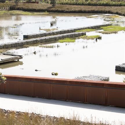 2019 WAN Awards: Vaughans Stream Corridor Wetlands + Bridge - LandLAB
