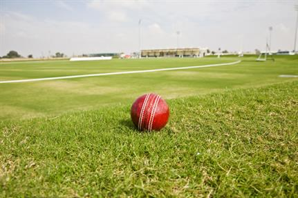 5 things every CEO can learn from the Cricket World Cup