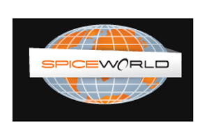 Microsoft and HP support Spiceworld B2B conference
