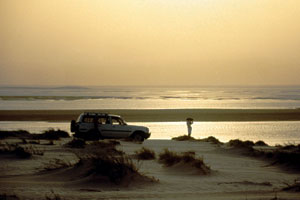 Qatar plans C&I boost