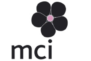 MCI France appoints Le Gal
