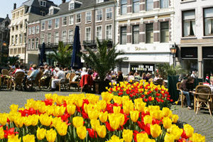 Dell and Trayport to attend Holland fam trip