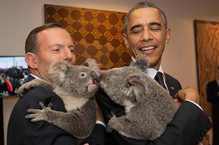 Tony Abbott & Barack Obama meet Koalas at G20 Leaders Summit, Brisbane