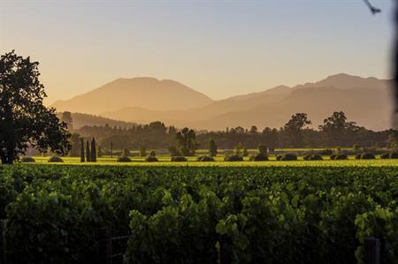 Starwood to open Napa Valley resort