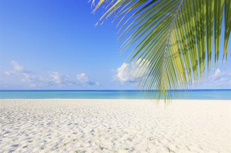 The Maldives is among the new destinations covered by Pacific World