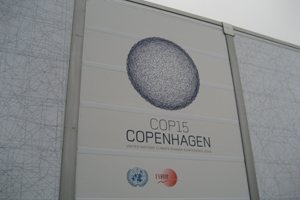 COP 15 host, the Danish Ministry, supports the global standard