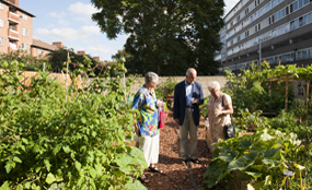 Sustainable grants: the Transform Project aims to create community gardens on derelict land. Steve Forrest/Workers' Photos pic