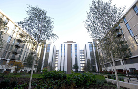 Olympic Village: social housing allocations unveiled
