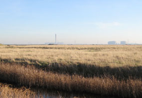 """Thames Estuary: """"obvious location for a 24-hour airport"""""""