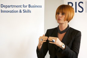 The areas will test proposals put forward by retail guru Mary Portas