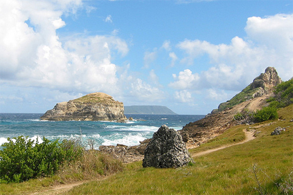 France is calling for the establishment of a 20MW project on the the Caribbean island Guadeloupe