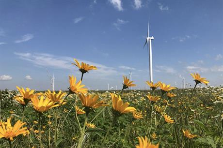 Alliant Energy owns and operates 568MW of wind power capacity in Iowa, Minnesota and Wisconsin