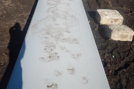 The bears' footprints can been seen on the blade, more were found on the nacelles (pic: Avangrid Renewables)