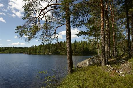 Tonator owns 6,000 square kilometres of forest in Finland