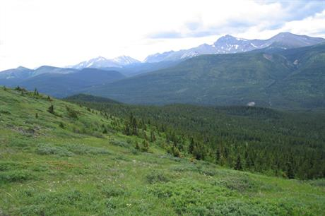 The project is to be built near Tumbler Ridge in British Columbia