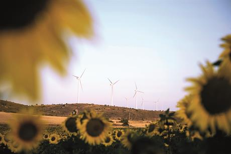 Sunny uplands -- Spain's market is motoring once again (pic: Iberdrola / Sisse Brimberg / Cotton Coulson)